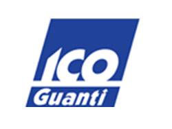 ico-guanti